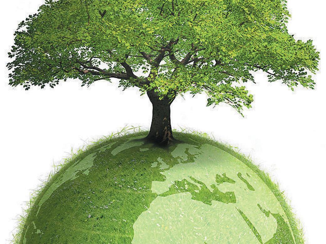 齐河县全力打造黄河流域生态保护和高质量发展的齐河样板